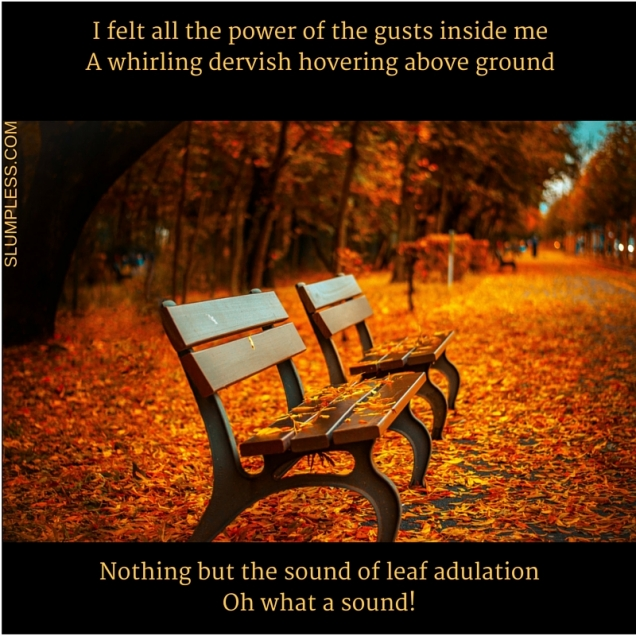 I felt all the power of the gusts inside me.A whirling dervish, hovering above groundNothing but the sound of leaf adulationOh what a sound!