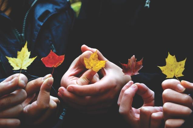 autumn-1839430_1920.jpg